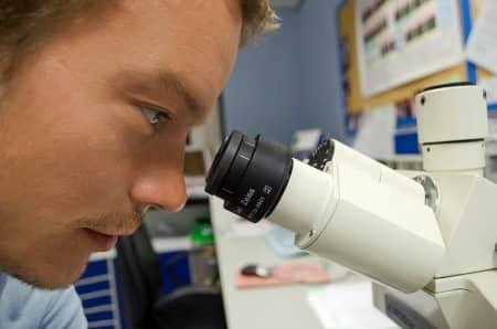 investigador al microscopio