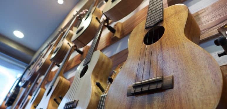 Instrumentos de cuerda pulsada: definición y ejemplos